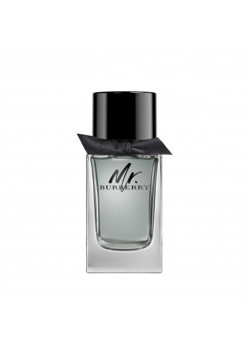 BURBERRY MR.BURBERRY EDT 100ML