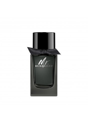 BURBERRY MR.BURBERRY EDP 100ML