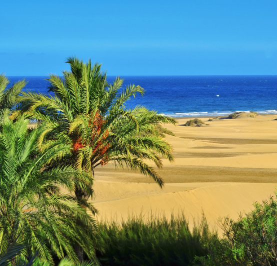 The 8 places you can not miss in the Canary Islands